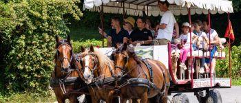 Balade en attelage \Entre mer et bocage, au rythme des chevaux\ Colleville-sur-Mer