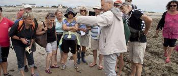 Découverte des algues Port-Bail-sur-Mer