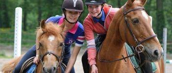 Promenades à cheval au parc du château tout l'été Flers