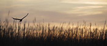Une nuit au marais Carentan-les-Marais