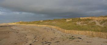 Les dunes : sortie nature Coudeville-sur-Mer