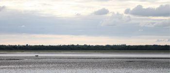 La baie des « veaux » Carentan-les-Marais