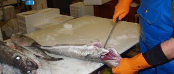La transformation du poisson : l\atelier de mareyage Port-en-Bessin-Huppain