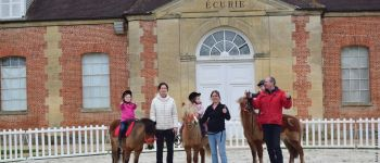 Baptêmes de poneys Le Pin-au-Haras