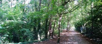 Balade botanique dans le parc du Biez à Mondeville Caen