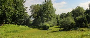 Visite guidée pour découvrir le patrimoine naturel de Sainte-Eugénie Silly-en-Gouffern