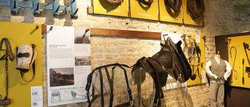 Exposition : A hue et à dia ! Histoire des chevaux de trait en Normandie Sainte-Mère-Église