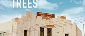 Le Doc\ du Mois - «Talking About Trees» Falaise